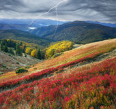 Colorful autumn. A beautiful panoramic scenery from the hills of the Carpathian Mountains, Ukraine, in our picturesque colorful autumn, where the blackberries Royalty Free Stock Photos
