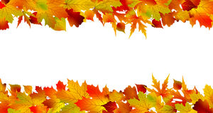 Colorful autumn border made from leaves. EPS 8 Stock Photography