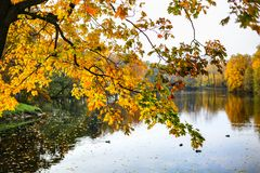 Free Colorful Autumn Branches Over Lake. Stock Photos - 129358023