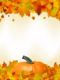 Colorful autumn card leaves with Pumpkin. EPS 8 Royalty Free Stock Photo