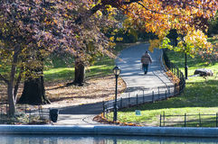 Colorful autumn on Central Park, New York. Photo shot from inside Central Park in New York Royalty Free Stock Photo