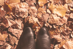 Colorful autumn colors in the fall season. Boots on the autumn l. Eaves. Toned image Stock Images