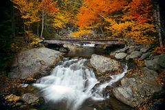 Colorful Autumn creek Royalty Free Stock Images