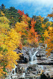 Colorful Autumn creek Royalty Free Stock Image
