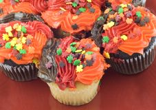 Colorful Autumn Cupcakes Royalty Free Stock Photos