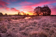 Colorful autumn dawn. Little river in the meadow Royalty Free Stock Images