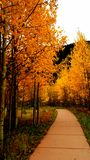 Colorful Autumn Day Stock Photo