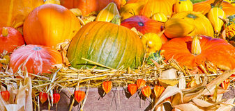 Colorful autumn decoration. Colorful autumnal decoration on a farm Royalty Free Stock Photo