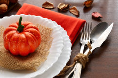 Colorful autumn decoration for festive dinner Stock Image