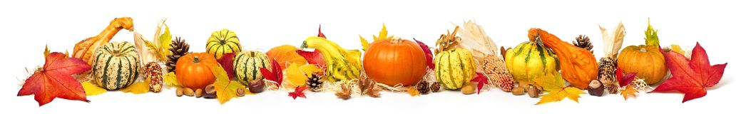 Colorful autumn decoration, extra wide format Stock Photos
