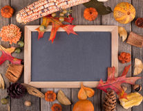 Colorful Autumn Decoration Royalty Free Stock Images
