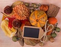 Colorful Autumn Decoration Royalty Free Stock Photos