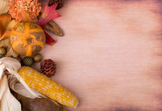 Colorful Autumn Decoration Stock Photos