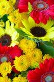 Colorful autumn floral arrangement Royalty Free Stock Photo