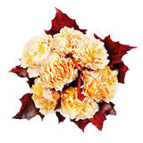 Colorful autumn flower bouquet from yellow roses and maple leav royalty free stock photos