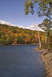 Colorful autumn foliage. Beautiful colorful autumn foliage in New England Royalty Free Stock Images