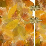 Colorful autumn foliage in chaotic order on an abstract background. With vintage paper photo frame and metal latch royalty free illustration