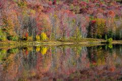 Autumn Reflection. Colorful autumn foliage reflects on the calm surface of a lake in West Virginia`s Canaan Valley resort area royalty free stock photography