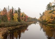 Colorful Autumn Forest along the Wisconsin River. A wonderful travel destination is Wisconsin parks in the Autumn season stock photos
