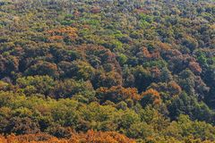 Colorful autumn forest. Change of seasons.View from the top. Autumn landscape. Multicolored trees. Picturesque forest stock photography