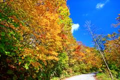 Colorful autumn landscape in Nyuto onsen hot spring resorts royalty free stock photo