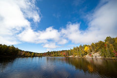 Colorful autumn forest lake Royalty Free Stock Photo