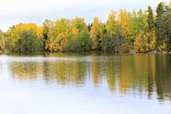 Colorful autumn forest at lake shore Royalty Free Stock Photography