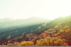 Colorful autumn forest mountain slopes sunset Stock Image