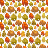 Colorful autumn forest seamless pattern design. Background with trees. Vector illustration Royalty Free Stock Photo
