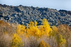 Waste piles next to mine polymetallic ores. Colorful autumn forest and waste platinum and Nickel rocks at mine. waste piles next to mine polymetallic ores Stock Photography