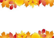 COLORFUL AUTUMN FRAME WITH TREE LEAVES. A bright color fall ornament with leaves of different trees royalty free illustration