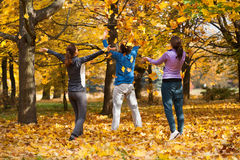 Colorful autumn fun Stock Photography