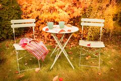 Colorful autumn garden nook with hot tea and blanket royalty free stock images