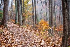 Colorful Autumn Hiking Trail Stock Photos