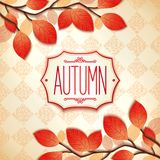 Colorful autumn label Stock Image