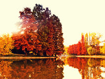 Colorful autumn lake. Colorful autumn trees and lake reflection Royalty Free Stock Images