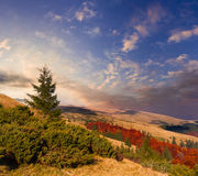 Colorful autumn landscape Royalty Free Stock Images