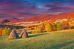 Colorful autumn landscape Stock Photography