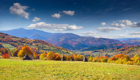Colorful autumn landscape Stock Photo