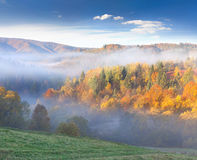 Colorful autumn landscape Stock Images