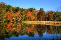 Colorful Autumn Landscape Stock Photography