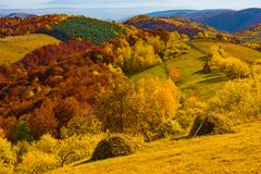 Colorful autumn landscape. In the Apuseni mountains. Transylvania, Romania Royalty Free Stock Image