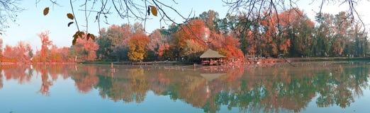 Colorful autumn landscape on the lake shore; panorama Stock Image