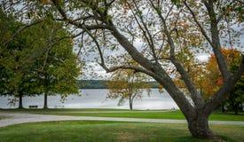 Colorful autumn landscape. Moraine State Park is a Pennsylvania state park lake Arthur stock photos