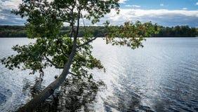 Colorful autumn landscape. Moraine State Park is a Pennsylvania state park lake Arthur royalty free stock photo