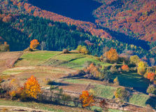 Colorful autumn landscape Stock Photos
