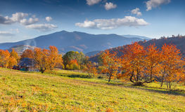 Colorful autumn landscape in mountain village. Stock Photography