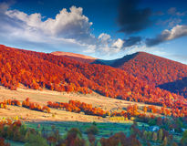 Colorful autumn landscape in mountain village Stock Photos