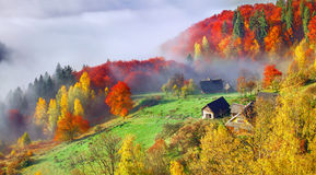 Colorful autumn landscape in the mountain village. Foggy morning Stock Images