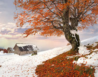 Colorful autumn landscape in the mountain village Royalty Free Stock Photo
